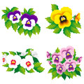 Four pansies Royalty Free Stock Photos