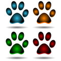 Four paws Royalty Free Stock Images