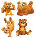 Four playful brown bears