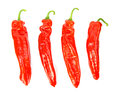 Four pointed peppers in a row against white background Stock Photography