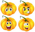 Four pumpkins illustration of the on a white background Stock Image