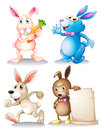 Four rabbits illustration of the on a white background Royalty Free Stock Photography