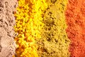 Four raws of flavorful bright spices Royalty Free Stock Image