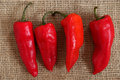 Four red peppers Royalty Free Stock Photo