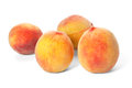 Four ripe peaches Royalty Free Stock Photo