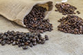Four samples pure Arabica coffee beans of various origins Royalty Free Stock Photo