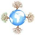 Four season tree with earth Royalty Free Stock Photo