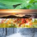 Four Seasons Collage
