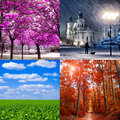 Four seasons specific nature collage Royalty Free Stock Image