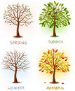 Four seasons - spring, summer, autumn, winter. Royalty Free Stock Photo