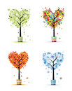 Four seasons - spring, summer, autumn, winter tree Stock Photos