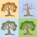 Four seasons tree Royalty Free Stock Photo
