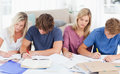 Four students studying hard Stock Images