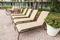 Four sun loungers by the poolwith palms florida several pool usa Stock Photos
