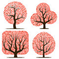 Four trees with red leaves