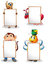 Four whiteboards in front of the four animals illustration on a white background Royalty Free Stock Photos