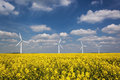 Four wind turbines under a blue cloud strewn sky group of in canola field deep and wispy white clouds Royalty Free Stock Images