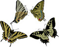 Four yellow butterflies Royalty Free Stock Photography