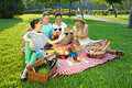 Four young friends picnicking in the park sitting on a rustic red and white checked cloth on a green lawn toasting with glasses of Royalty Free Stock Photo