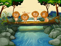 Four young lions at the river illustration of Stock Photography