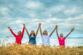 Four young people staying raised hands wheat field sunset time Stock Image