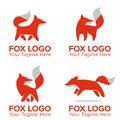 Fox Cute Mascot or Logo For Your Company