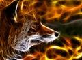 Fox fractal Royalty Free Stock Photo