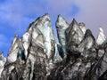 Fox Glacier NZ (7)