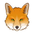 Fox head red isolated on white vector illustration Stock Photos
