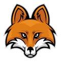 Fox head Royalty Free Stock Photo