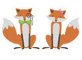 Foxes couple illustration Stock Photos