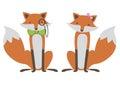 Foxes Couple Illustration