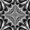 Fractal Surreal Black White Fl...