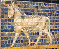 Fragment of ancient frescoes the babylonian ishtar gate Royalty Free Stock Photography