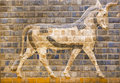 Fragment of ancient frescoes the babylonian ishtar gate Stock Photography