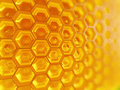 Fragment of Honeycomb Royalty Free Stock Photography