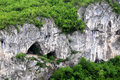 Fragment of Limestone Rock Royalty Free Stock Photography
