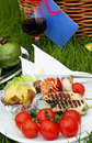Fragment of picnic setting Stock Image