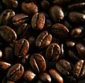 Fragrant fried coffee beans Royalty Free Stock Images