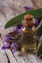 Fragrant sage tincture in glass bottle vertical on the table macro Stock Images