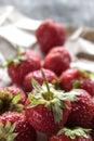 Frais juste sélectionné fraises Image libre de droits
