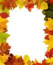Frame of Autumn Leaves Royalty Free Stock Photo