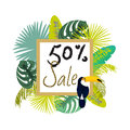 Frame banner for summer sale advertisement. Palm leaves flyer. Royalty Free Stock Photo