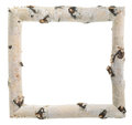 Frame of birch logs on white background Royalty Free Stock Image