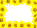 Frame from bright young sunflowers Royalty Free Stock Photo