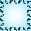 Frame of butterflies with copy space on blue gradient background Royalty Free Stock Photo