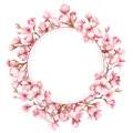 Frame with the cherry blossoms. Watercolor illustration. Royalty Free Stock Photo