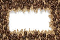 Frame of coffee bean with empty place for your text Royalty Free Stock Photo
