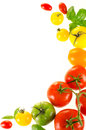 Frame of colorful tomatoes Stock Images
