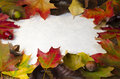 A frame of colourful autum leaves nuts and berries around a pap white textured paper with cop space Stock Photography
